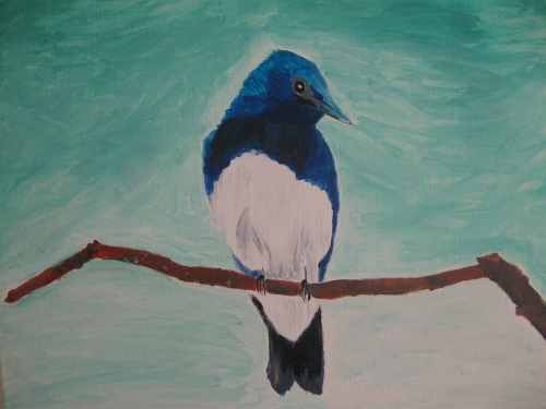 blekitny ptak
